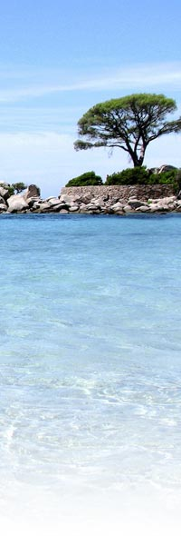 Vacances à la plage en Corse