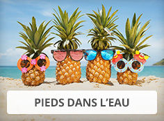 Réservez vos vacances aux Antilles en hôtel pied dans l'eau
