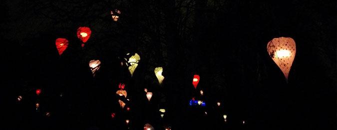 Fête des lumière 2014 de Lyon. Lampions et univers féérique dans le parc de la tête d'Or par Christophe Martine