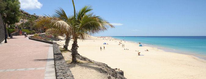 Plage de sable blanc à Fuerteventura