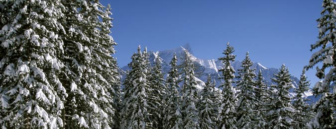 La Plagne en Savoie