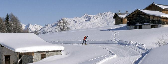 Piste de ski de fond à La Plagne au coeur des Alpes