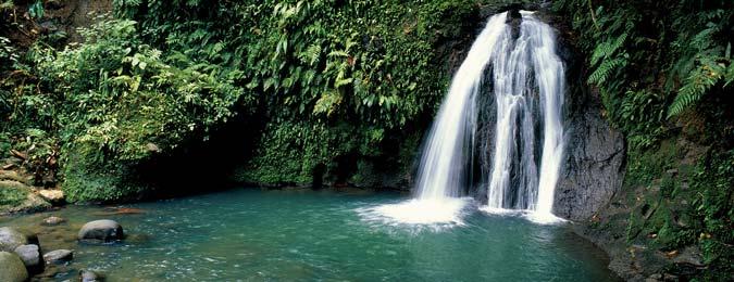 Cascade aux Ecrevisses à Petit-Bourg en Guadeloupe