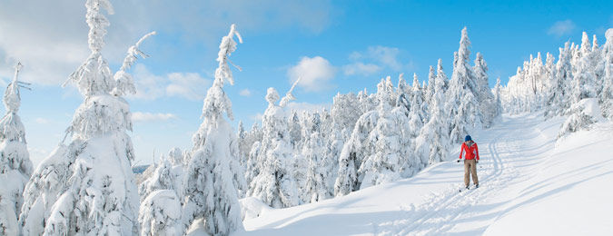 Vacance neige