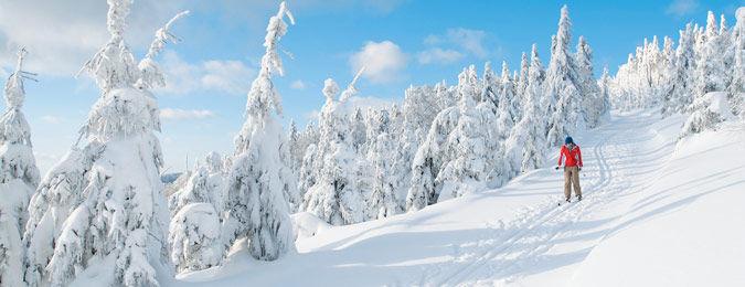 Location de résidence au ski
