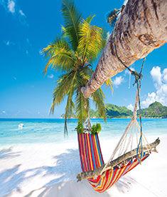 Vacances sous le soleil l'hiver avec Leclerc Voyages